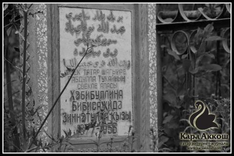 В Зеленодольском районе Татарстана вандалы разгромили еще одно татарское кладбище