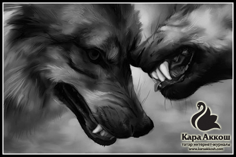 Роза Яппарова : «Как щенок должен уметь лаять, так человек должен знать свой родной язык»